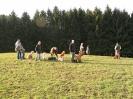 Wurftreffen März 2007